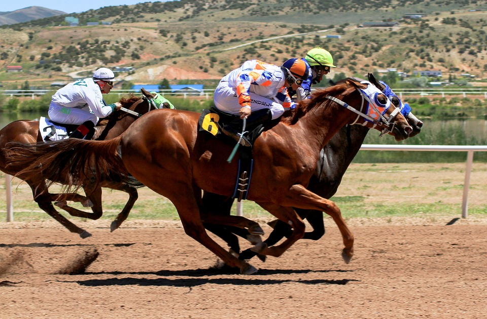 horses racing on a track